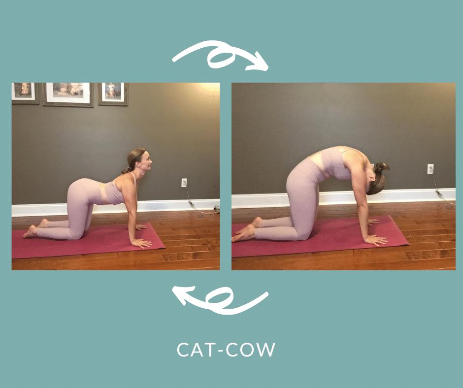Postpartum Core Yoga   Cat Cow